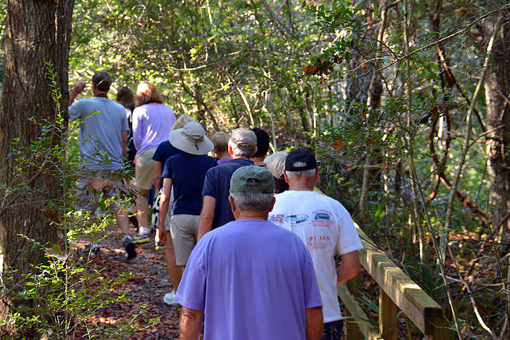A guided tour hikes through Bald Head Woods, NC